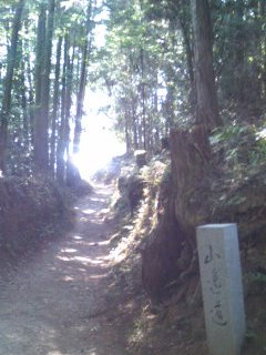 山の辺の道.jpg